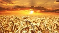 Oaza Tv - Praha / Slunce spravedlnosti / Sun of Righteousness (2019-03-01)